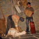 Ecomuseu dels Pastors de la Vall d´Àssua