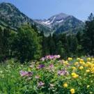 Parc Natural de la vall de Sorteny