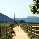 Via Verda del Carrilet Girona - Olot