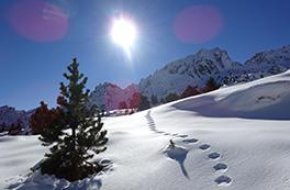 Estanys de Colomèrs hivernal (2 dies)