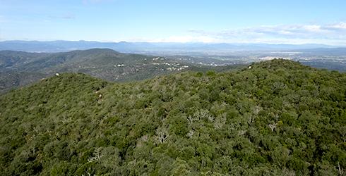 Ardenya-Cadiretes (Giron�s)