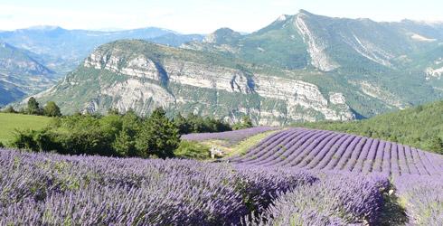 Proven�a-Alps-Costa Blava