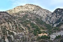 L´anticlinal del Roc de la Pena vist des de prop del Collet de la Sansa.