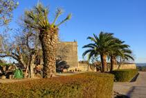 Jardins de caire mediterrani a Madremanya.