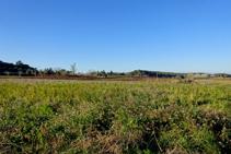 Pla d´en Carabús amb vistes al massís del Canigó.