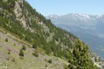 El vessant inclinat per on transcorre el camí dels Certeresos.