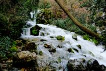 Naixement del riu Cardener.