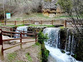 Cam� Verd de la Vall de Lord - Fonts del Cardener