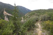 Tram planer que transcorre pel Serrat Pedregós.