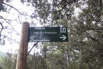 Girem a la dreta, deixem enrere el camí que continua cap al Pas de l´Arbocera.
