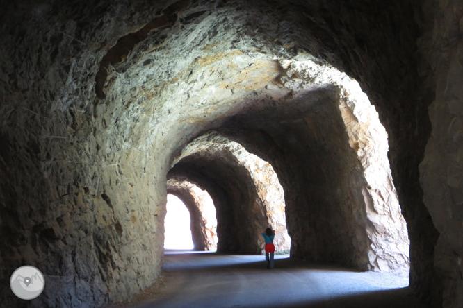 Camí del barranc del Bosc i Roca Regina 1
