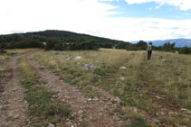 Deixem la pista per on veníem i agafem a mà dreta (fita) la pista que avança cap a la serra del Banyader.