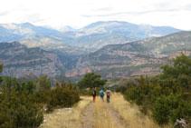 Durant la baixada gaudim d´unes magnífiques vistes de Collegats i de totes les muntanyes que ens envolten.