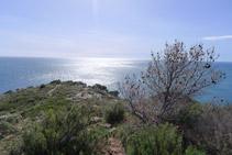 Baixem uns metres fins al Cap Gros.