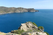Punta de la Trona, en primer terme, i badia de Jóncols i punta de la Reparadora al fons.