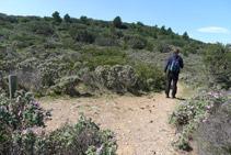 Des de la cabana de pastors, agafem ara el camí de la dreta, que ressegueix el Cap de Norfeu pel seu costat N.