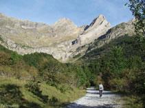 Tot sortint del bosc veiem el pic de Pineta i la Punta del Forcarral.