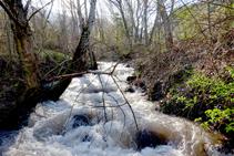 El riu del Cantó.