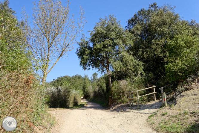 El castell de Sant Miquel des de Girona 1