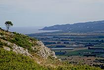 Vistes a la plana al·luvial del Ter i la muntanya de Begur des del coll d´en Garrigars.