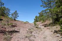 Terres rogenques al vessant nord del Tossal del Quer.