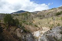 Torrent de Bosons i Vallcebre.