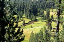 """Vall de fons pla afectada per un procés de rebliment de sediments, amb el riu formant les """"aigües tortes""""."""