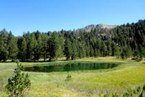 El bucòlic estany dera Lòssa.