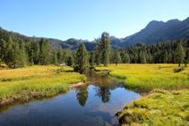 El riu d´Aiguamòg forma les Aigües Tòrtes enmig de prats i pins negres.