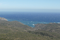 Vistes al N de la costa del Cap de Creus i el mar Mediterrani, amb l´entrant de Tavallera en primer pla.