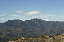 Vistes de la Muntanya de Verdera i el Canigó.