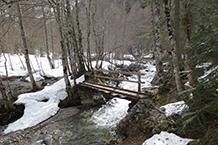 Creuem el riu per un primer pont de fusta.