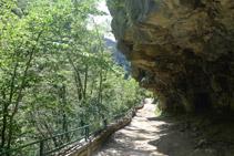 Cova de Frachinal.