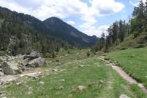 Zona de prats alpins.