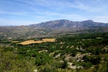 Vistes de la roureda d´Aulàs i la serra de Sant Gervàs des de Sapeira.