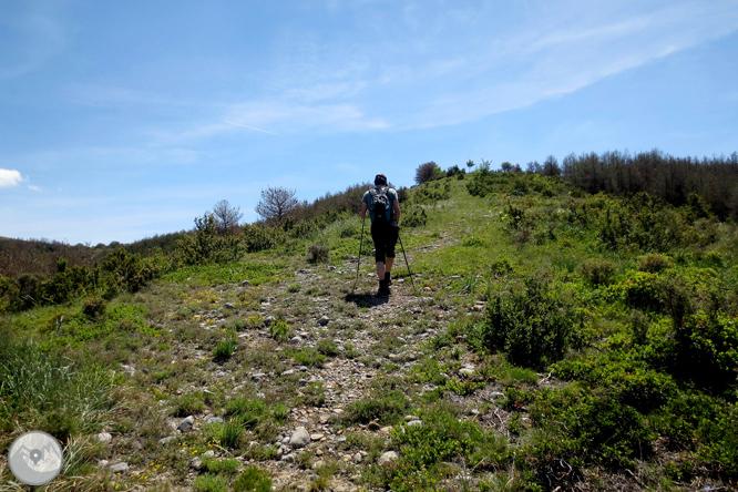 Ruta circular per la Terreta des de Sapeira 1