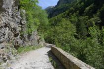 El camí va ascendint amb suavitat.