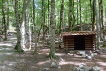 Cabana enmig de la fageda.