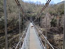 El pont penjant de Sant Jaume.