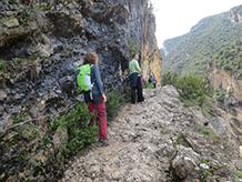 Després d´un tram boscós, el camí es fa més estret i s´arrapa a la paret: hem arribat al congost!