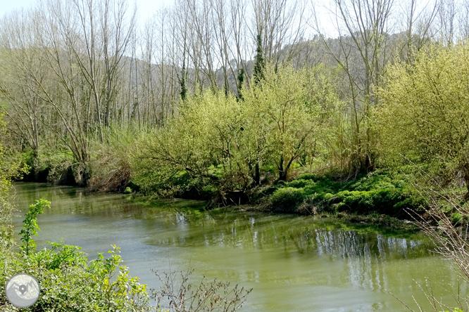 El congost del Ter i la Muntanya dels Sants Metges 1