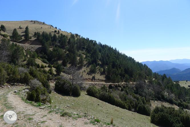 Costa Pubilla o Pla de Pujalts (2.056m) al Montgrony 1