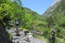Ascendim per un camí a vegades pedregós per entre boscos i espais oberts.