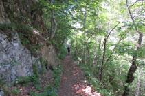 El camí que travessa el bosc és còmode i agradable.