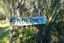 Camí de tornada a Sadernes.