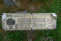 Panell explicatiu d´un dels arbres típics de la zona. En mal estat.
