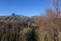 Vista al NO des de la collada de Trases, amb el Montsent de Pallars.