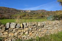 Mur de pedra seca, prats i nucli d´Olp.