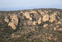 Roca Ponça, a Solius.
