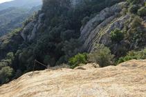 Davallant de l´Agulla de la Roca Llisa.